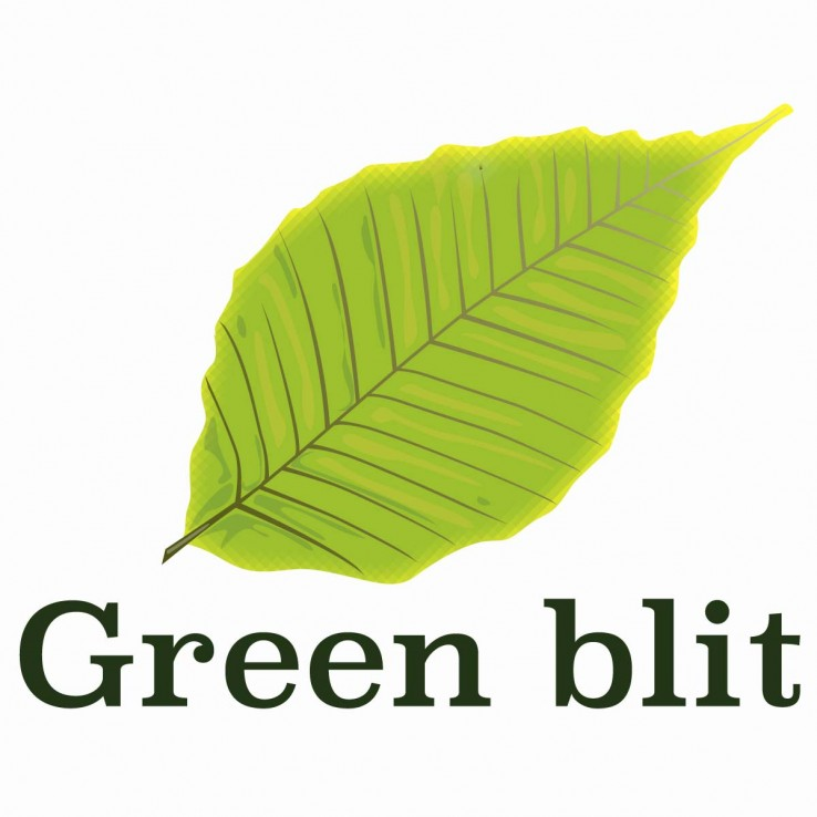 Logo Green blit